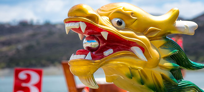 Tim Horton's Dragon Boat Festival